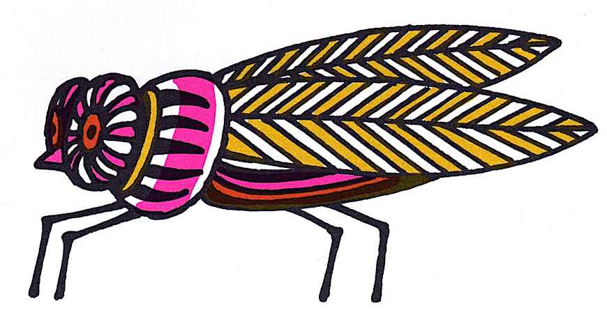 John Alcorn 1966 color fly