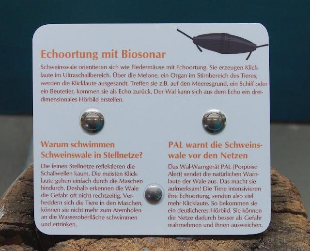 Mehr übers Meer lernen: Das Ostsee Info-Center in Eckernförde (+ Verlosung). Dem Schutz der Schweinswale vor Fischernetzen dient das Wal-Warngerät PAL.