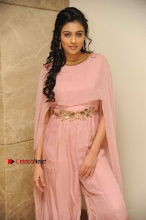 Actress Neha Hinge Stills in a Beautiful Pink Dress at Srivalli Movie Audio Release  0003.jpg