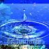 Deskripsi Parameter Fisika dan Kimia Perairan Sebagai Pendukung Kehidupan Ekosistem Akuatik