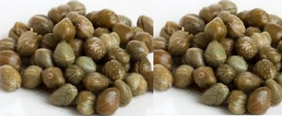 Capers,Kabra Spice name in different Indian languages (regional)