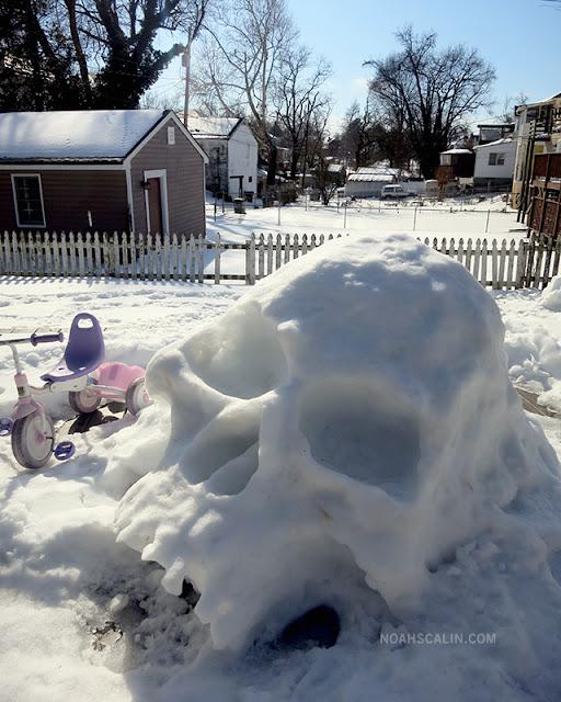 Cráneo de Snowmageddon 12