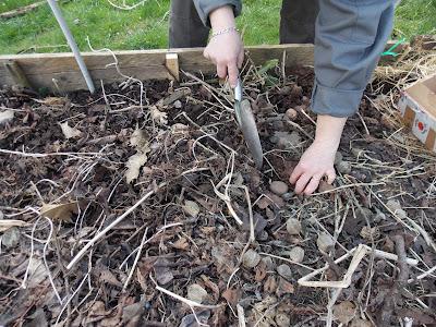 ecolo bio nature conseils et astuces en permaculture urbaine jardinage bio cologie. Black Bedroom Furniture Sets. Home Design Ideas