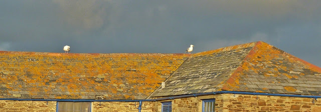 Cornish roof