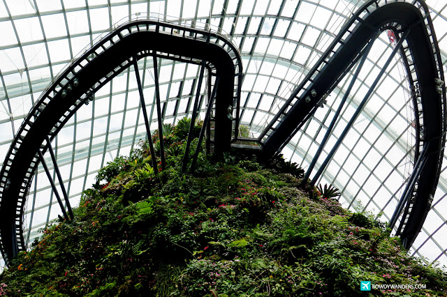 bowdywanders.com Singapore Travel Blog Philippines Photo :: Singapore :: Gardens By The Bay - Flower Dome and Cloud Forest: What To Expect When You Revisit