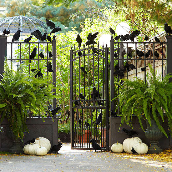 26 Halloween DIY decoration ideas for front porch. DIY Halloween bird theme and decoration for front door. Halloween spooky crow decoration ideas for front porch. Halloween spooky party decoration ideas for lawn. Spooky crow decoration ideas for lawn. Halloween decoration ideas for outdoor. Holidays front porch ideas.