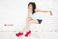 Bollywood Actress Adah Sharma Spicy Ultra HD Poshoot Gallery in Denim Shorts  0009.jpg