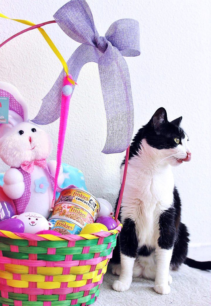 Celebrate Easter with your pets with you shop at 99 Cents Only Stores. Shop adorable Easter baskets and decor, and grab supplies for affordable D.I.Y pet toys! #99YourEaster #DoThe99 #DoingThe99 #AD