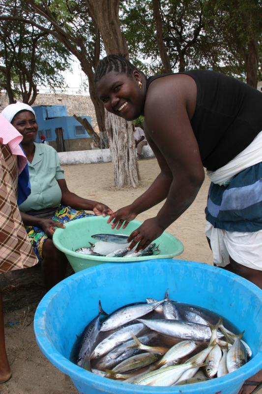 Selling fresh fish in Africa to make Egusi Smoked Fish Stew