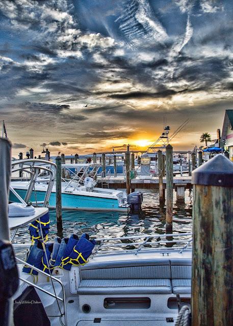http://fineartamerica.com/featured/harbor-sunset-judy-wilder-dalton.html
