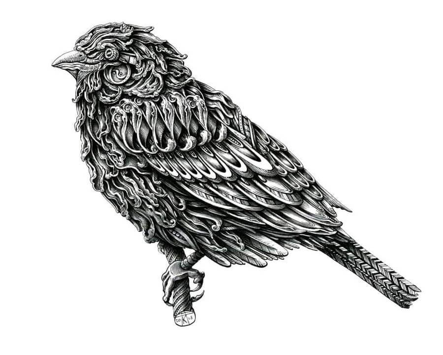 04-Sparrow-Alex-Konahin-www-designstack-co