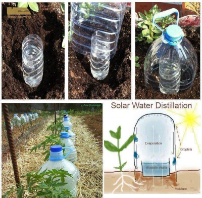 Garden ideas:Water saving technique in gardening, cool idea on keeping your garden plants watered, watering garden plants,  Water saving technique in gardening, evaporation loss prevention model,New garden design, latest invention in water irrigation