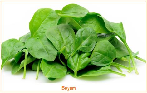 Kandungan dan Manfaat Bayam - Sayuran Bayam - gambar Bayam