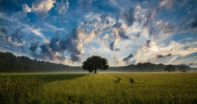 Gambar Pemandangan Indah