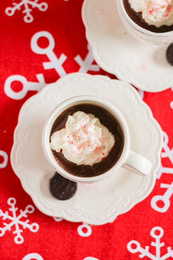 This boozy adult hot chocolate is rich, creamy, and oh so tasty. Made with dark chocolate, peppermint schnapps and creme de menthe, it will definitely warm you up on a cold day!