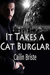 https://books2read.com/cat-burglar