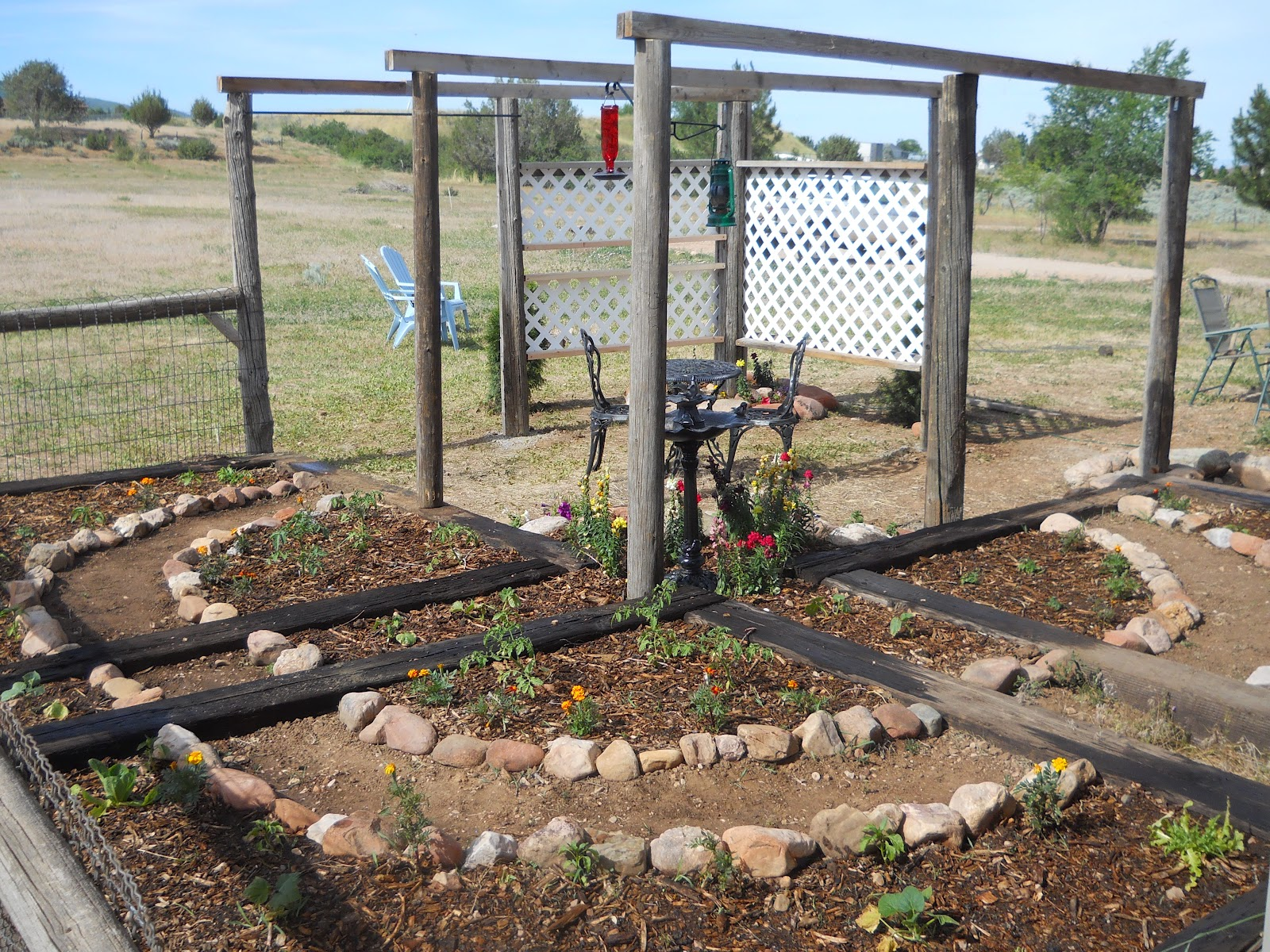 Dry creek an experiment in sustainable living for Vegetable garden pergola