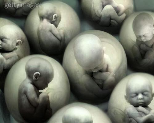 Aborto ou Abortamento Espontâneo e Provocado