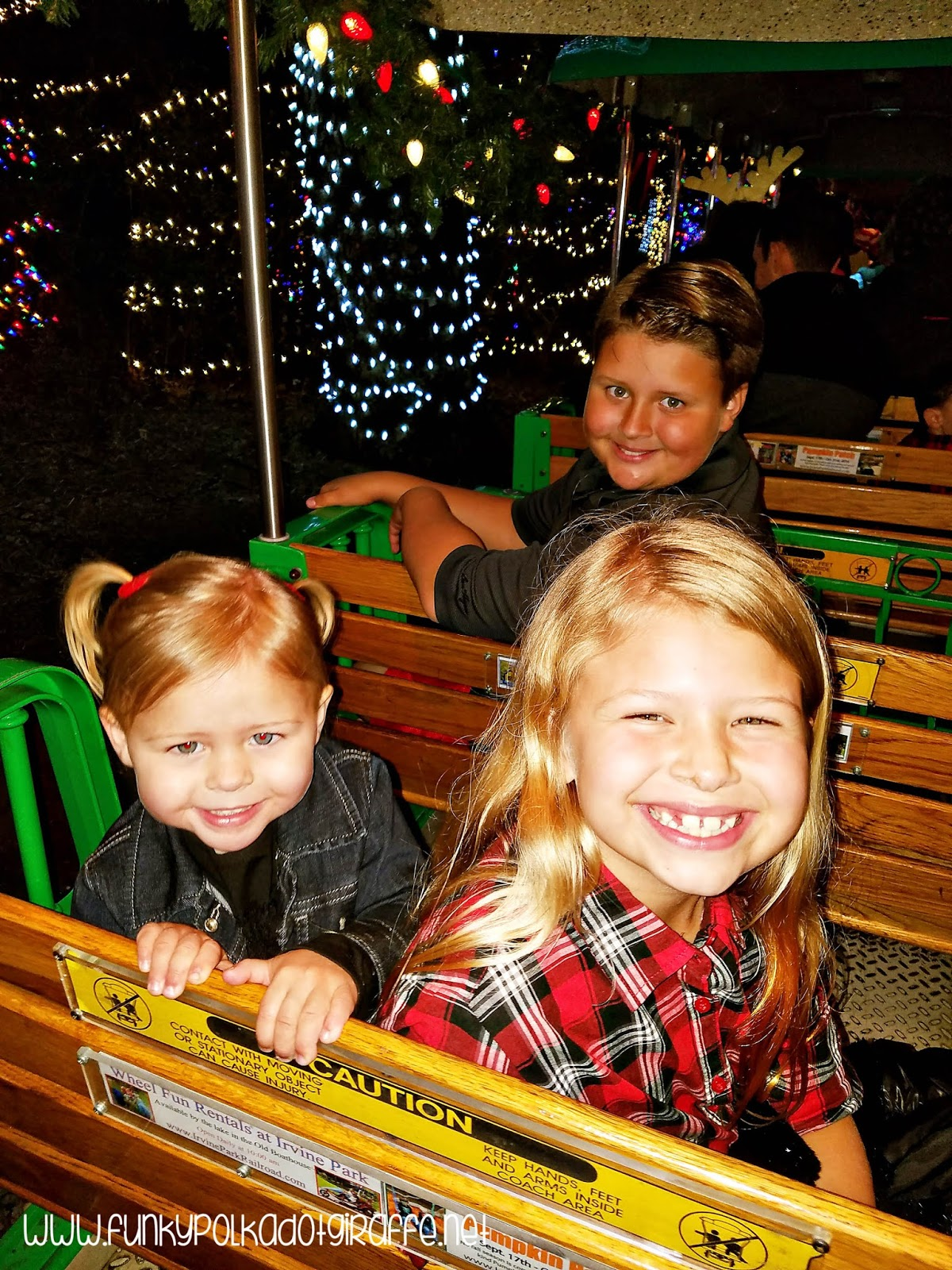 and the christmas train isnt just for christmas loving adults the kids love it too - The Christmas Train