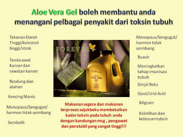 Image result for kebaikan detox aloe vera