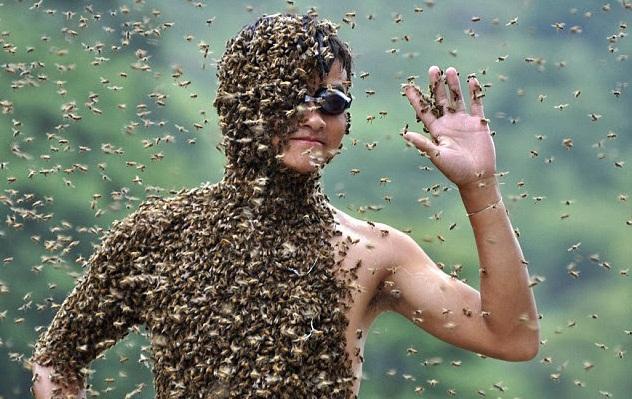 رجل يغطي نفسه بـ 26 كيلو من النحل