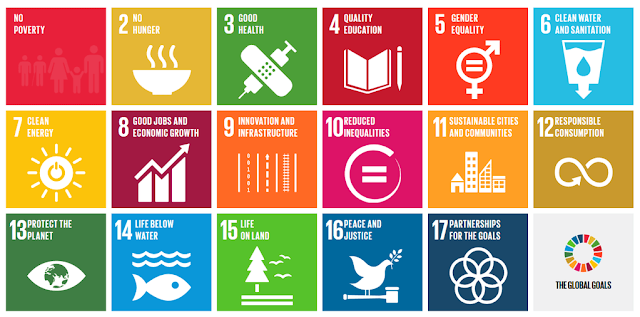 Mapping SGI's intent and purpose with Sustainable Development Goals