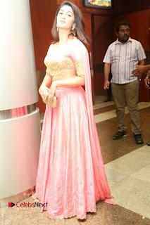 Actress Deepthi Pictures at Jaguar Movie Audio Launch  0139.JPG