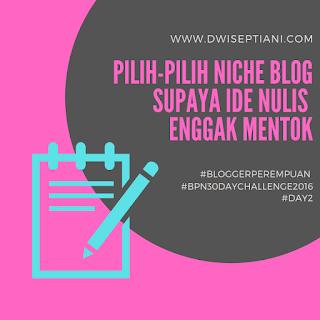apa itu niche blog