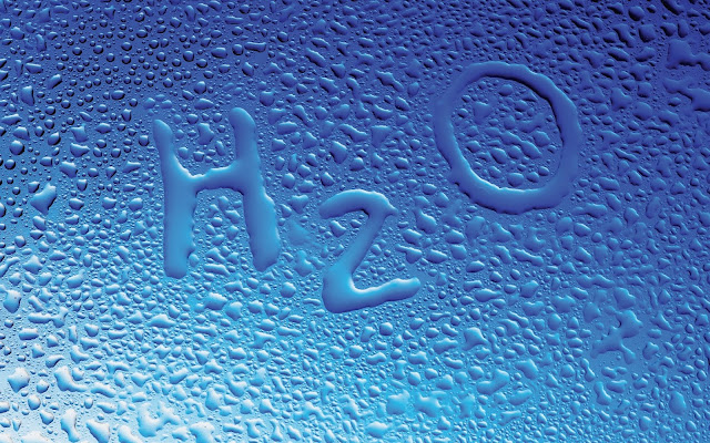 Kualitas Air Untuk Ikan Cupang