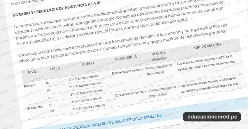 Conoce los Horarios y Frecuencia de Asistencia a los Colegios, según la Resolución Viceministerial N° 117-2020-MINEDU