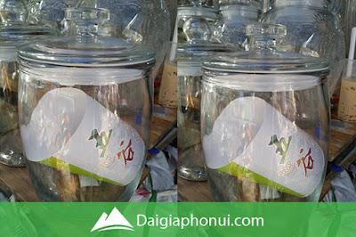 Bình Ngâm Rượu Trung Quốc Giá Rẻ - Thố Trơn - Dai Gia Pho Nui