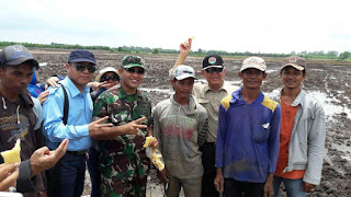 Dirjen Tanaman Pangan Geber Gerakan Pengolahan Tanah di Kabupaten OKI