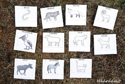 Eläinsuunnistuksen kortit Papunetin Kuvatyökalulla