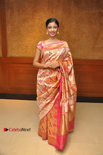 South Indian Celebrities Pos at Love For Handloom Collection Fashion Show  0111.jpg