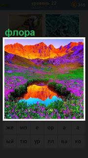 флора в горах с отражением в водоеме