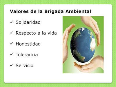 Valores de la Brigada Ambiental