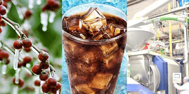 Tahapan dan Cara dalam Membuat Es White Coffee
