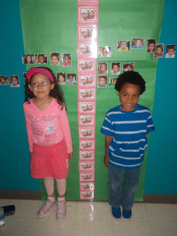 Kinder Garden: Mrs. Wood's Kindergarten Class: Butterlfy Measurement