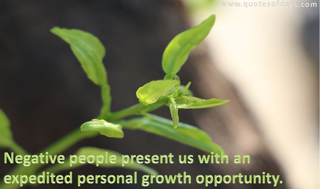 Negative people present us with an expedited personal growth opportunity.