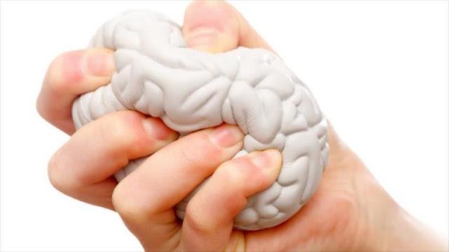 El estrés puede transformar el tamaño del cerebro