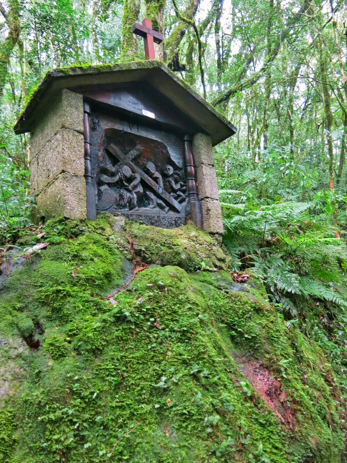 Via Sacra esculpida em madeira, na zona rural de Treze Tílias