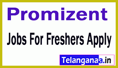 Promizent Recruitment Jobs For Freshers Apply