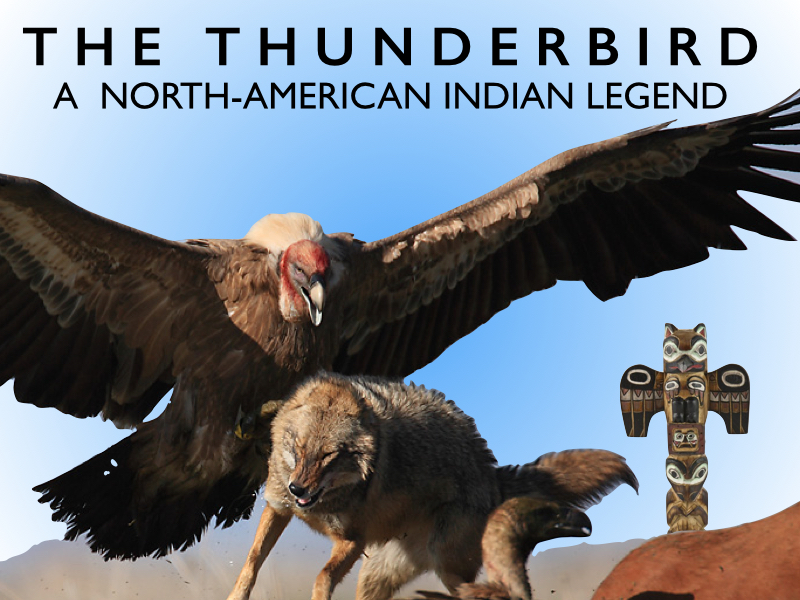 DOGBRINDLE.COM : The Lost Photo of the Thunderbird — Real ... - photo#8
