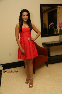 Actress Catherine Tresa Latest Pos in Red Short Dress at Intex Air Conditioners Launch  0030.jpg