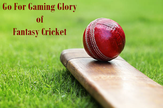 Go For Gaming Glory of Fantasy Cricket