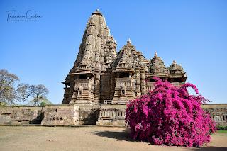 Viajes_India_Fotografia.
