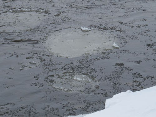 ice on the Muskegon River