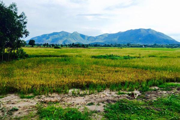 Suối Tiên và núi Dinh Vũng Tàu