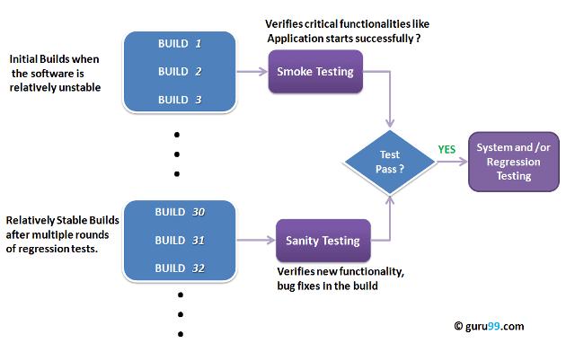 A QNT CLA természetes fogyás testzsírégető fenntartja az izomtömeget - 90 kapszula Fruugo EG