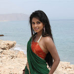 Amala Paul Gallery From Bejawada Telugu Movie
